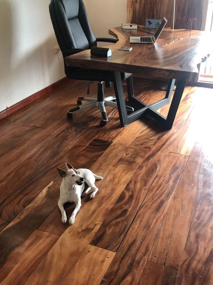 foto suelo y escritorio