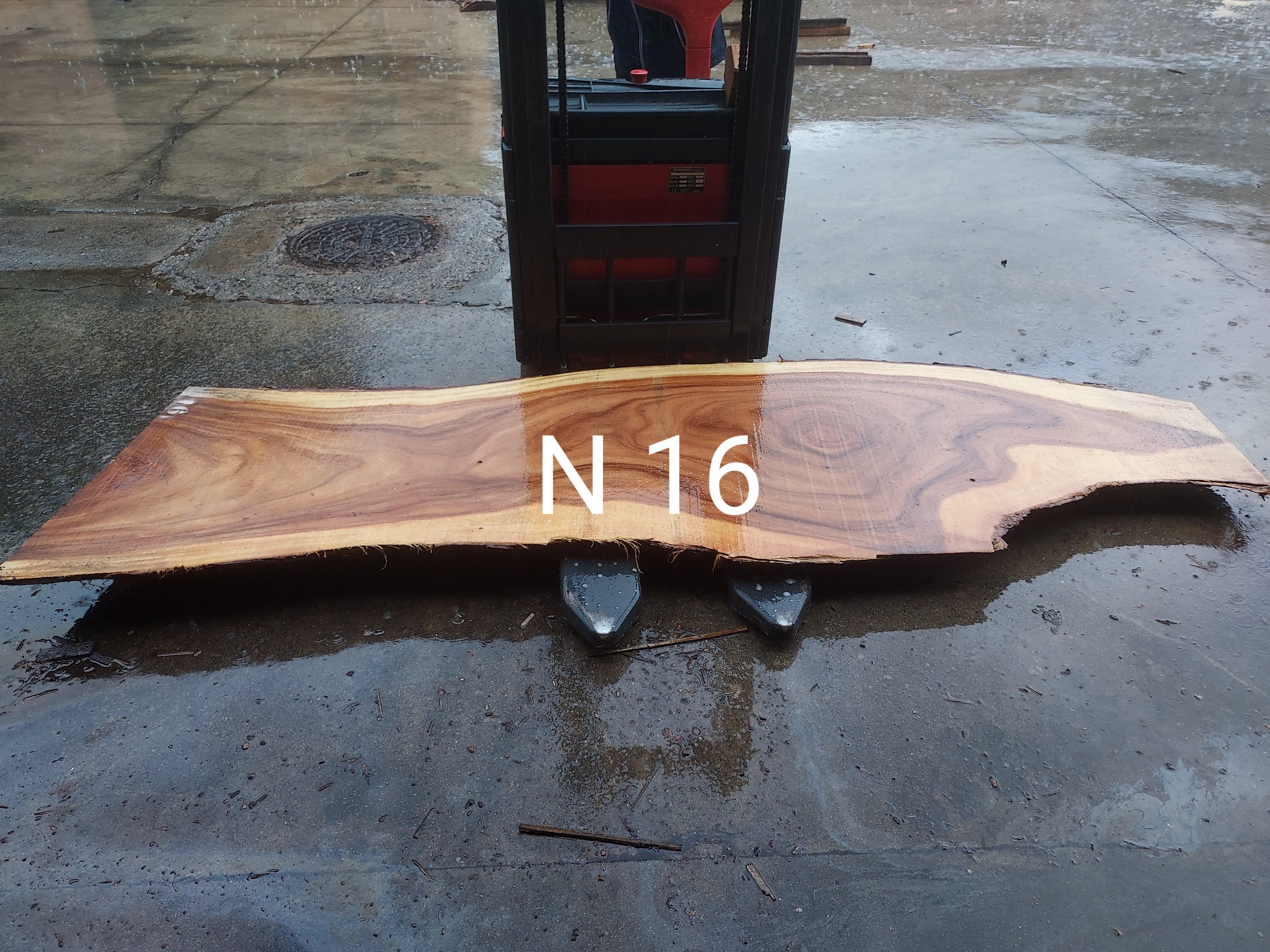 N 16 LARGO