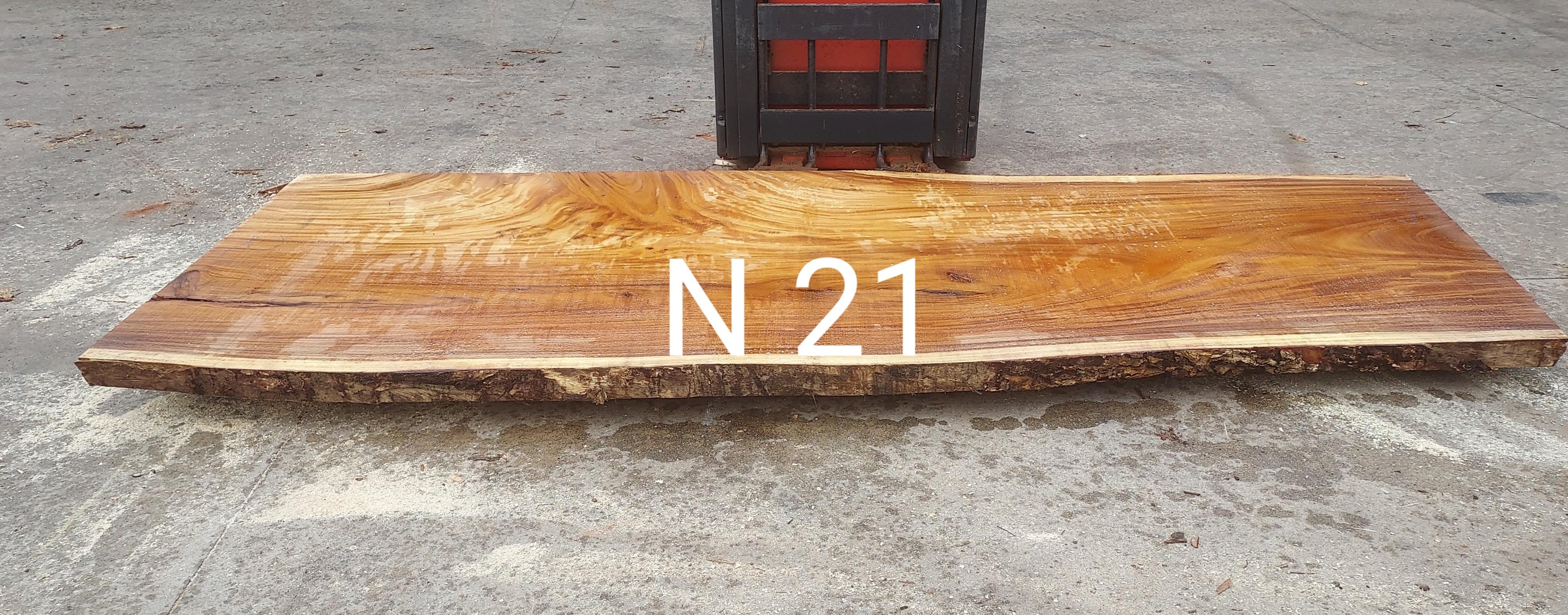 N 21 ANCHO
